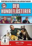 Der Hundeflsterer - Staffel 2 (6 DVDs)