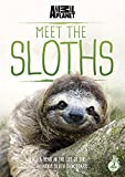 Meet The Sloths