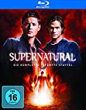 Staffel 5 (+ Bonus-DVD) [Blu-ray]
