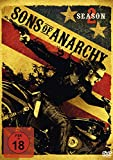 Sons of Anarchy - Staffel 2 (4 DVDs)