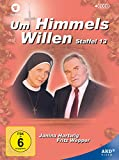 Um Himmels Willen - Staffel 13 (4 DVDs)
