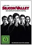 Silicon Valley - Staffel 1 (2 DVDs)