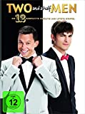 Two and a Half Men - Staffel 12 (2 DVDs)
