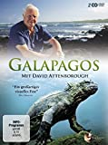 Galapagos mit David Attenborough (2 DVDs)