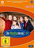 Staffel 13 (2 DVDs)